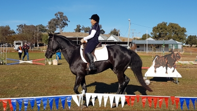 Robin Johnson of UHWEC competing in the Three Phase MUDWEQ Working Equitation Competition