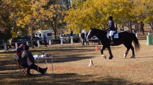 Kerry Balmer-Smith took out Introductory Level Champion