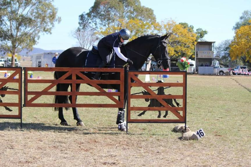 Working Equitation Explained